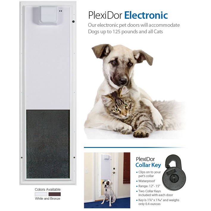 Medium Dog Cat Door Ct Pet Fence